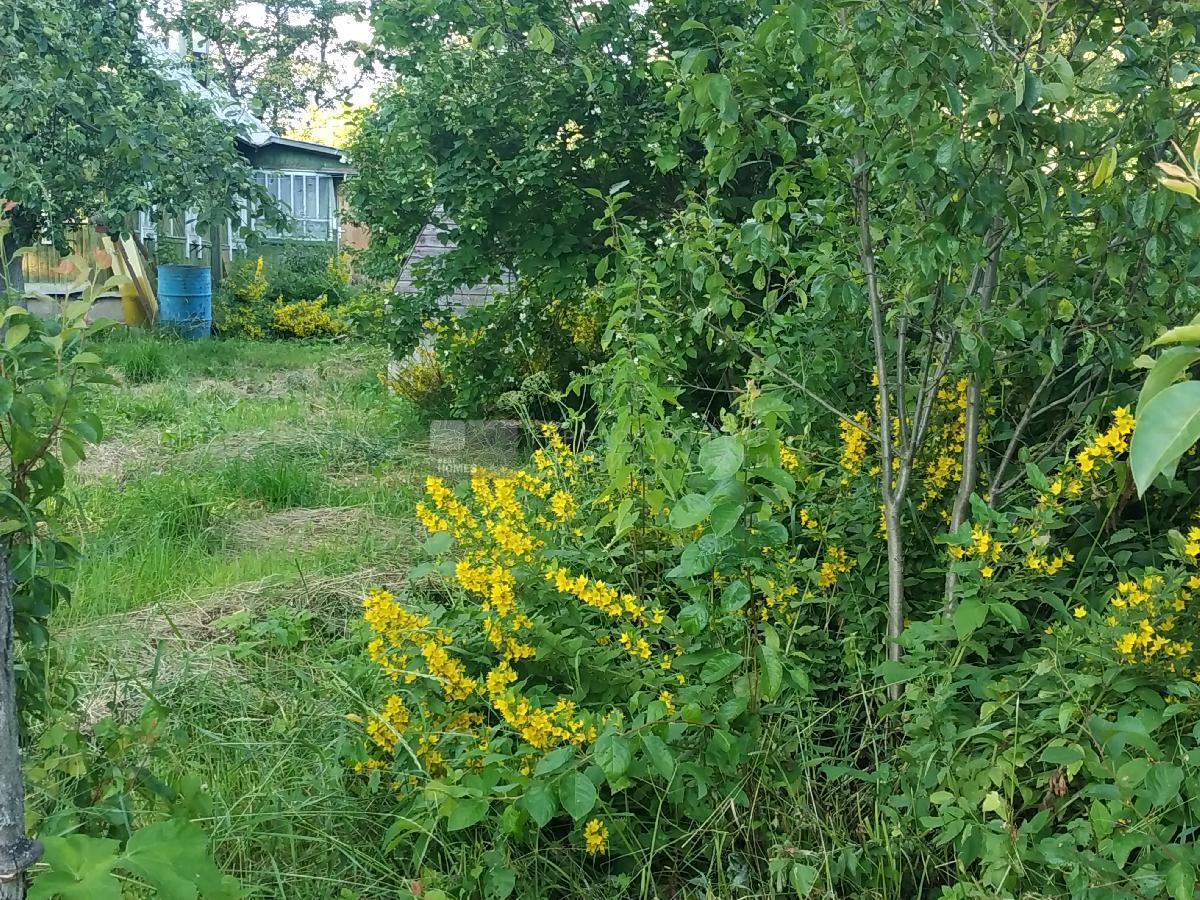 деревня прокшино калужская область старые фото вид объятий, чтобы